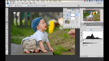 How to Adjust Levels in Photoshop