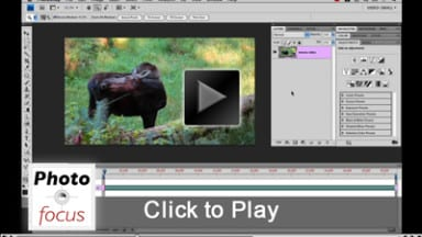 Editing Video Using Photoshop Extended