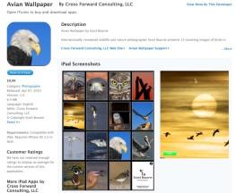 avianwallpaper