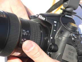 Nikon D7000 In The Wild