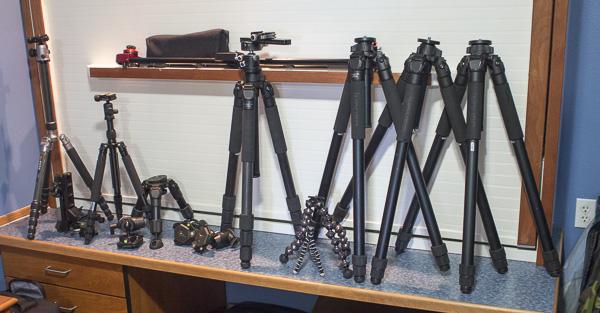 The Many Tripods Used on the Alaska Eagle shoot