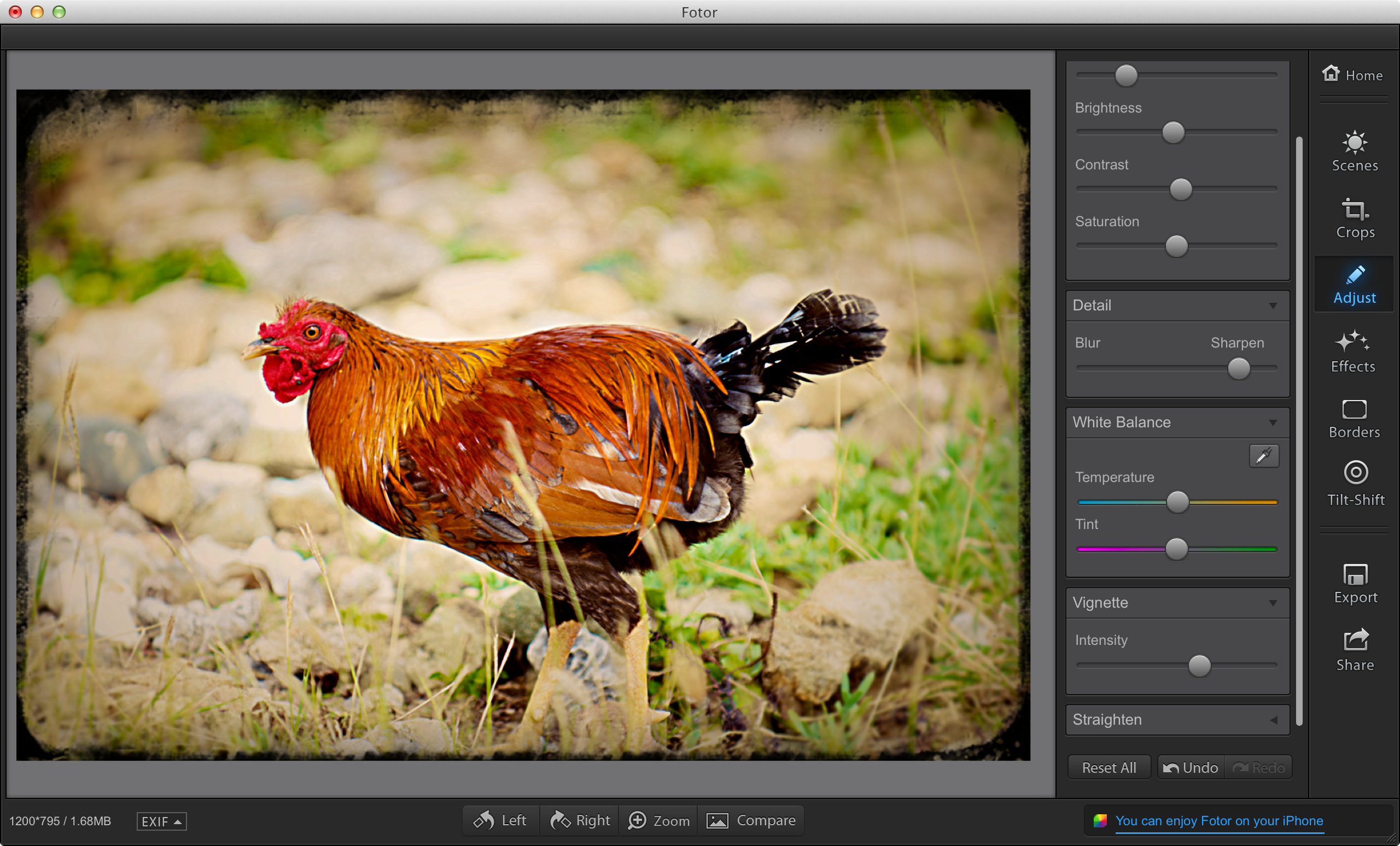 Fotor Edit Mode