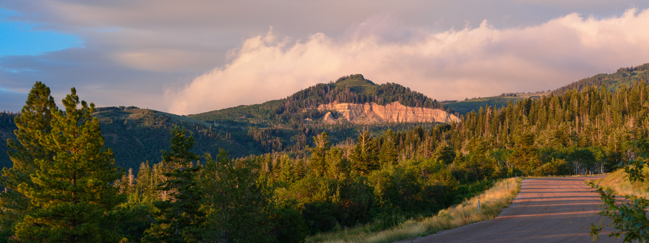 Nikon D7100, 105mm f/2.8 Micro VR lens, f/11, 1/100s, ISO 500, finished in Lightroom5, stitched in Photoshop CC.