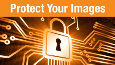 How to Protect Your Online Galleries
