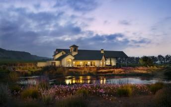 california-winery-photographer