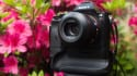 mark-morrow-photofocus-a7r-35mm-sonnar-2