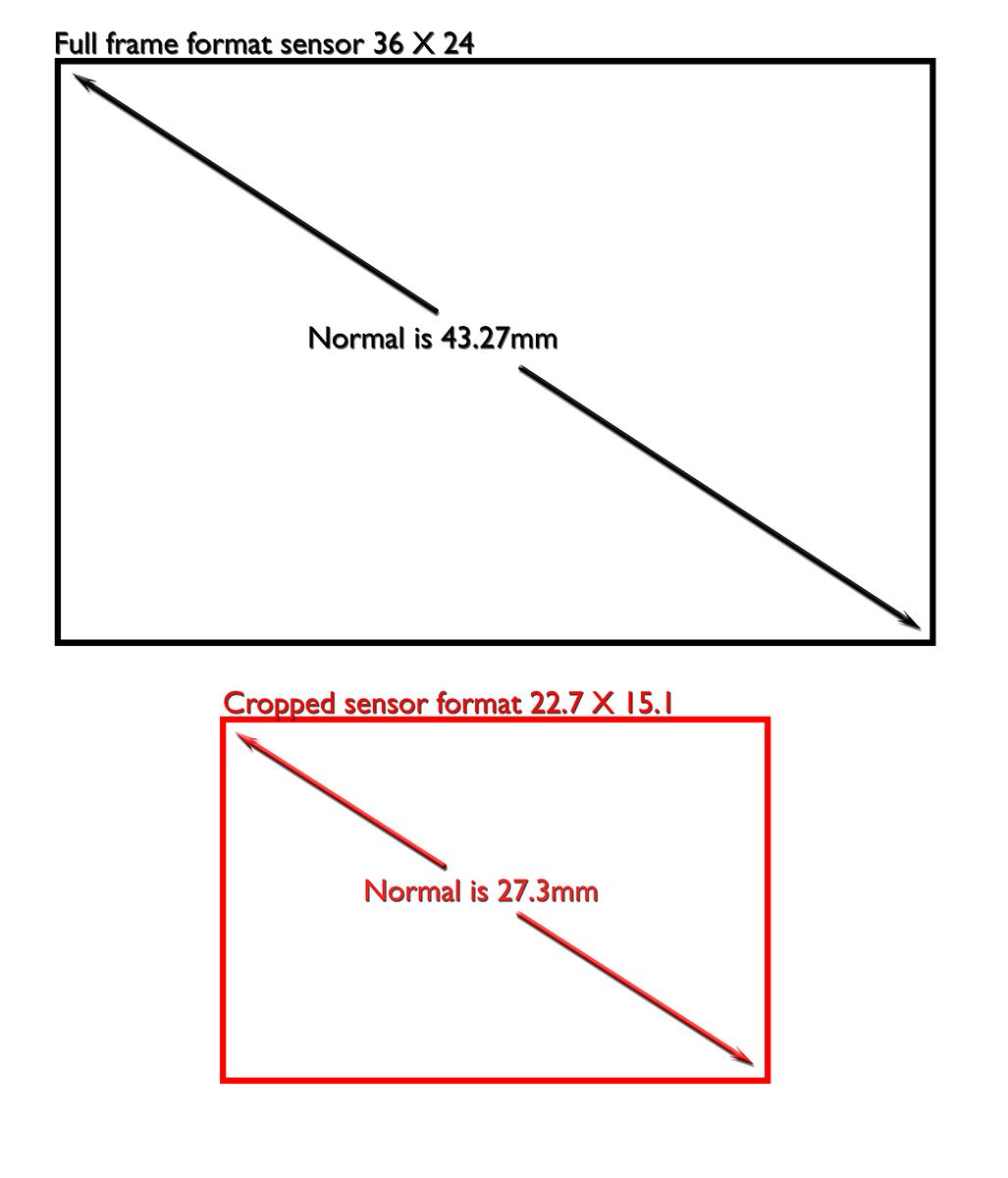 Normal lenses