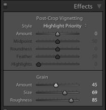 Grain_Fig1a
