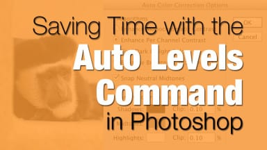 Saving Time with the Auto Levels Command in Photoshop