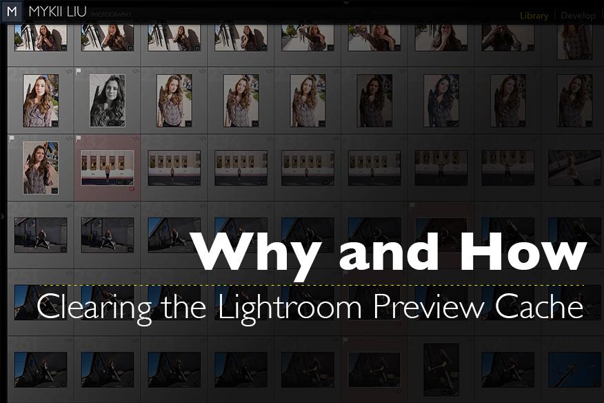 lightroom discard standard previews