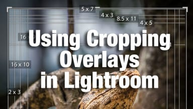 Using Cropping Overlays in Lightroom