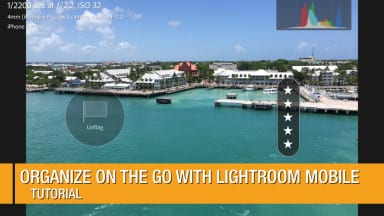 Organize On the Go with Lightroom Mobile