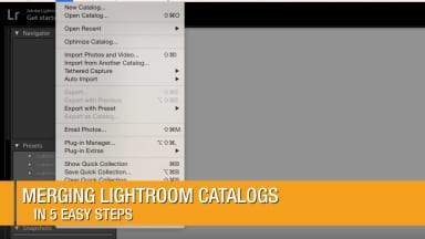 Merging Lightroom Catalogs in 5 Easy Steps