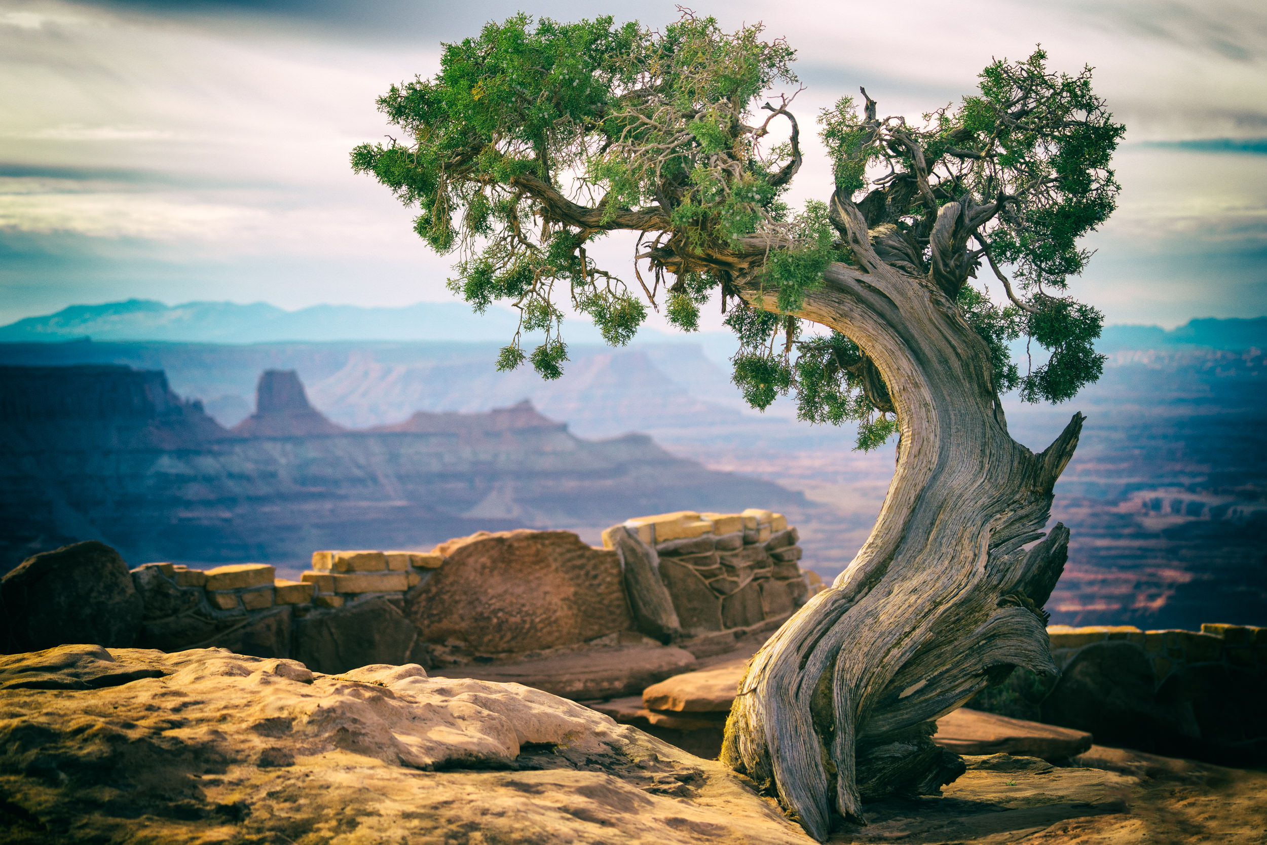 Dead Horse Point State Park, Moab, UT, USA