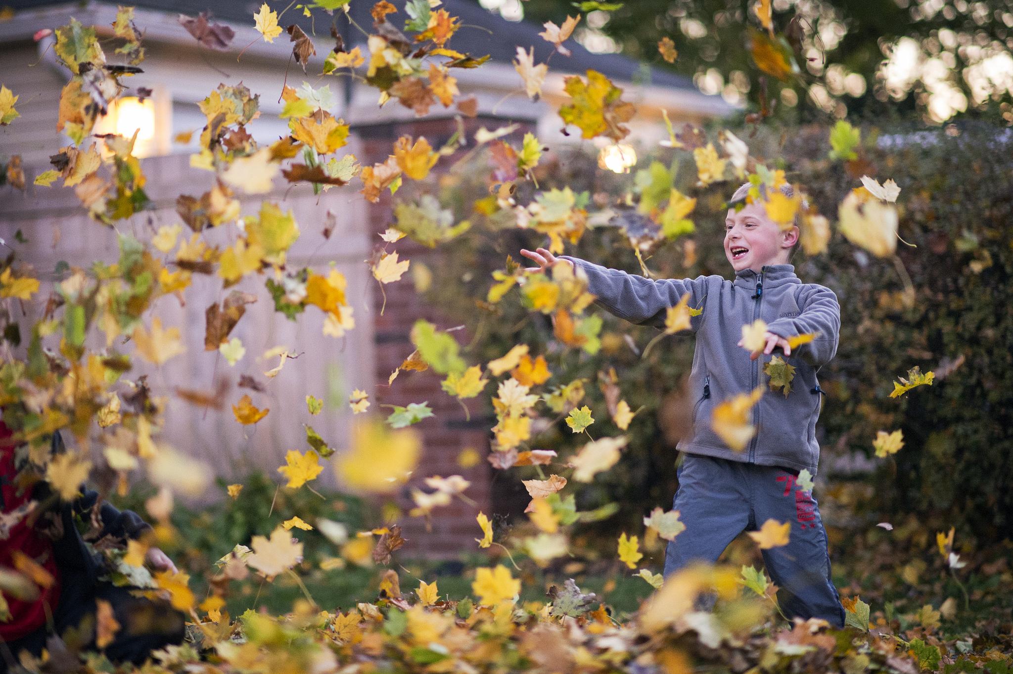 Joy of Autumn by Ben Grey