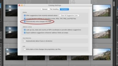 Automatically Generate XMP Files in Lightroom