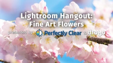 Lightroom Hangout: Fine Art Flowers with Anne Belmont
