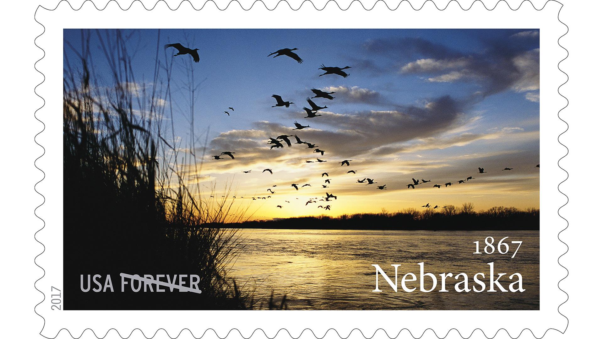 Levi Sim Forever Stamp Nebraska Michael Forsberg-1