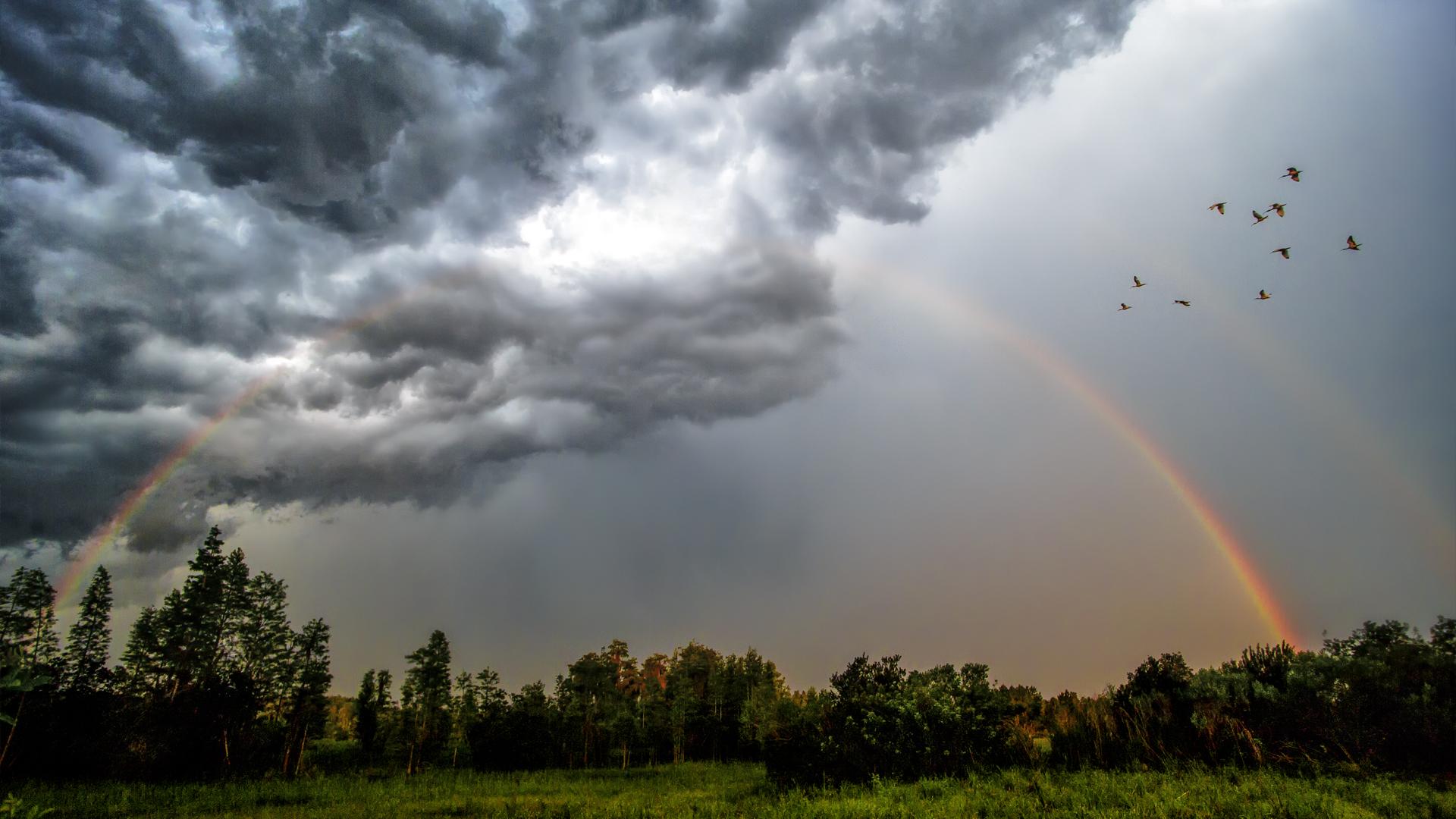 featured-rainbows
