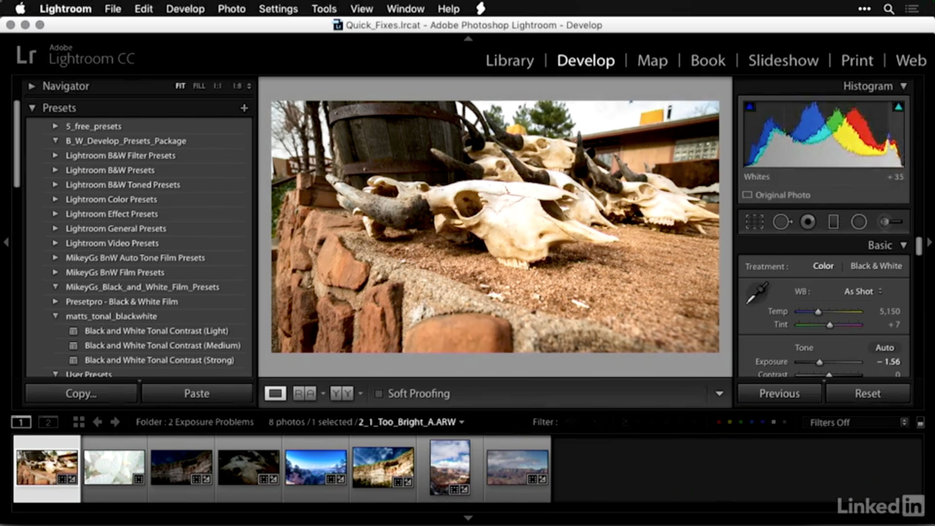 Photofocus | How do I fix an image that\'s too bright in Lightroom?