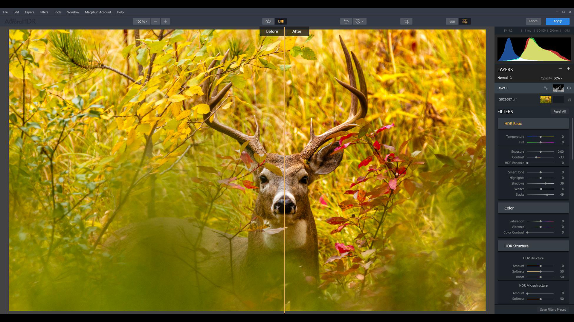 jhahn-FEATURED-wildlife-tone-mapping