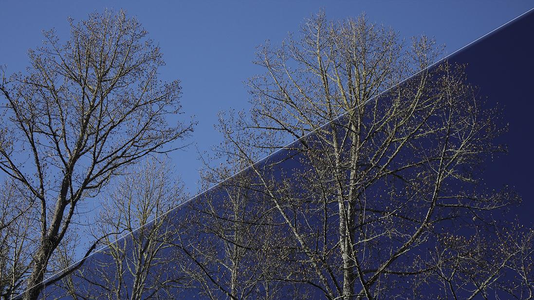 Diagonal Split-Sky without Polarizer/with Polarizer