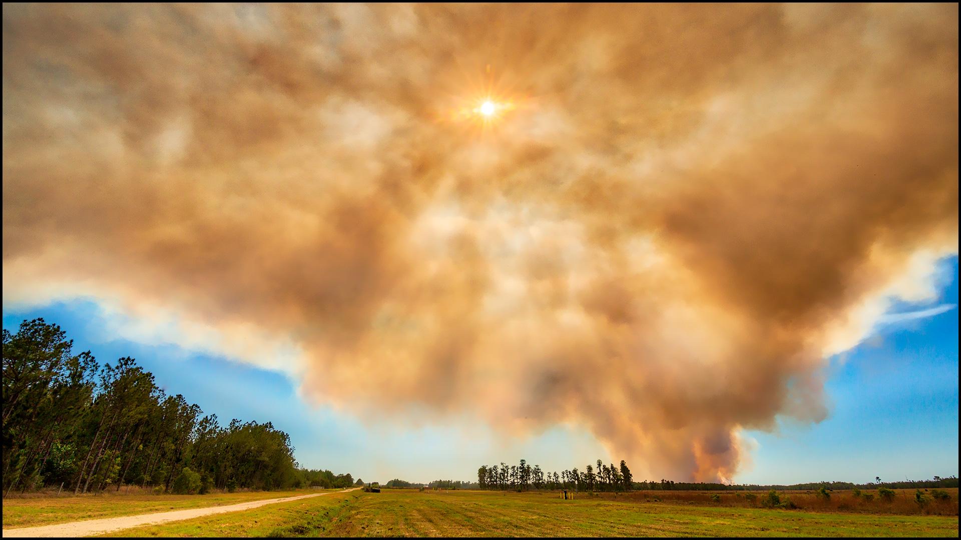 FEATURED-platypod-jhahn-wildfires