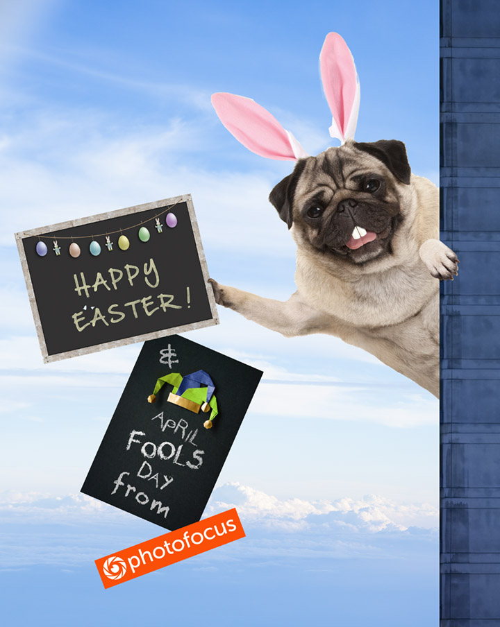 Happy Easter and April Fools from Photofocus