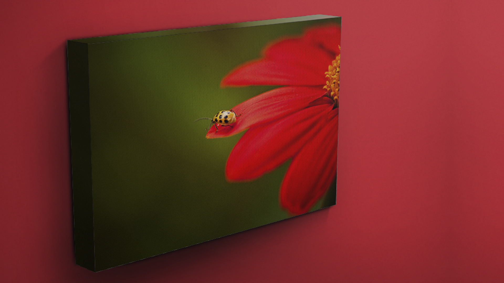 Featured -frame-less gallery wrap