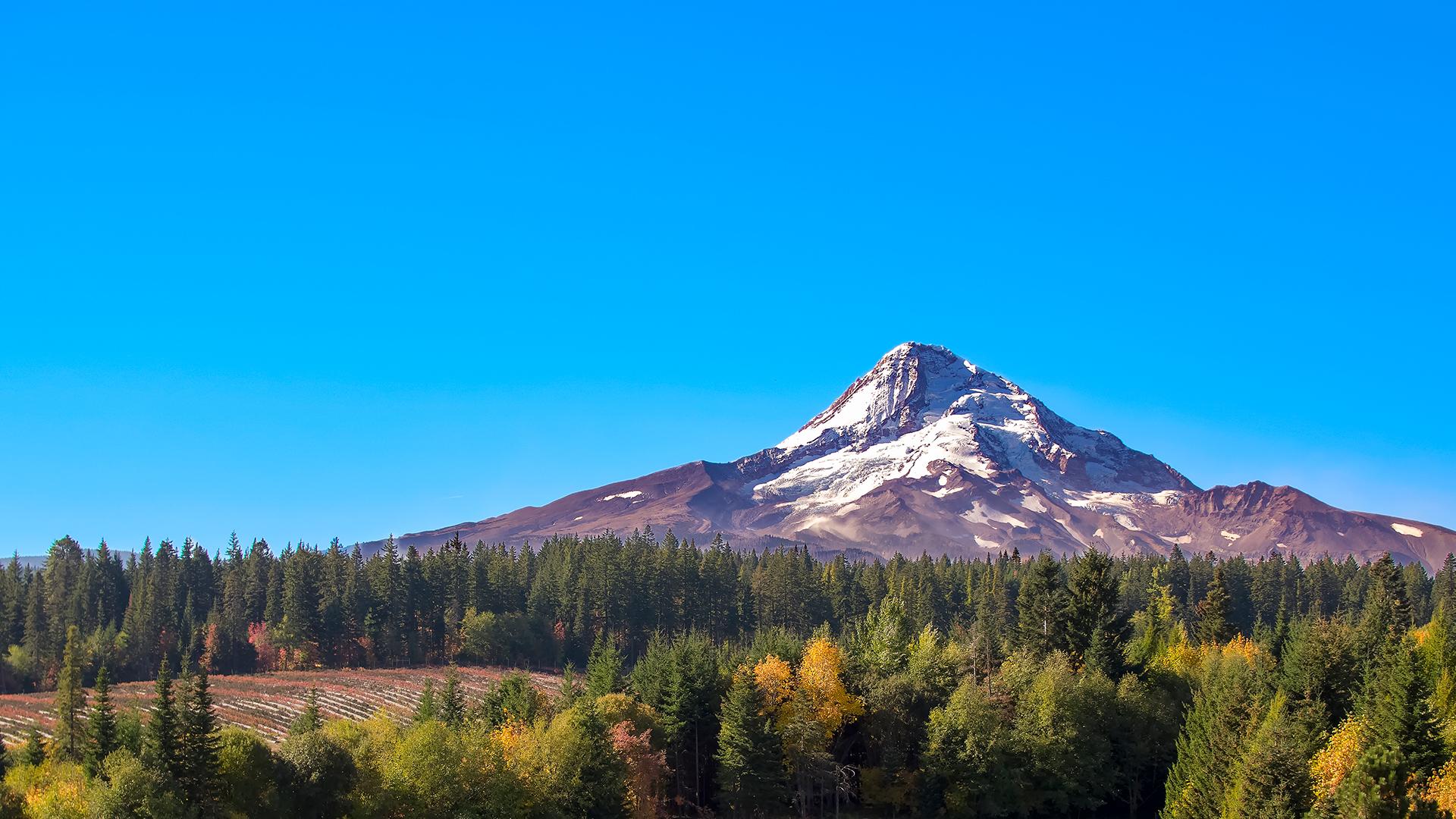 Mt Hood in Autumn