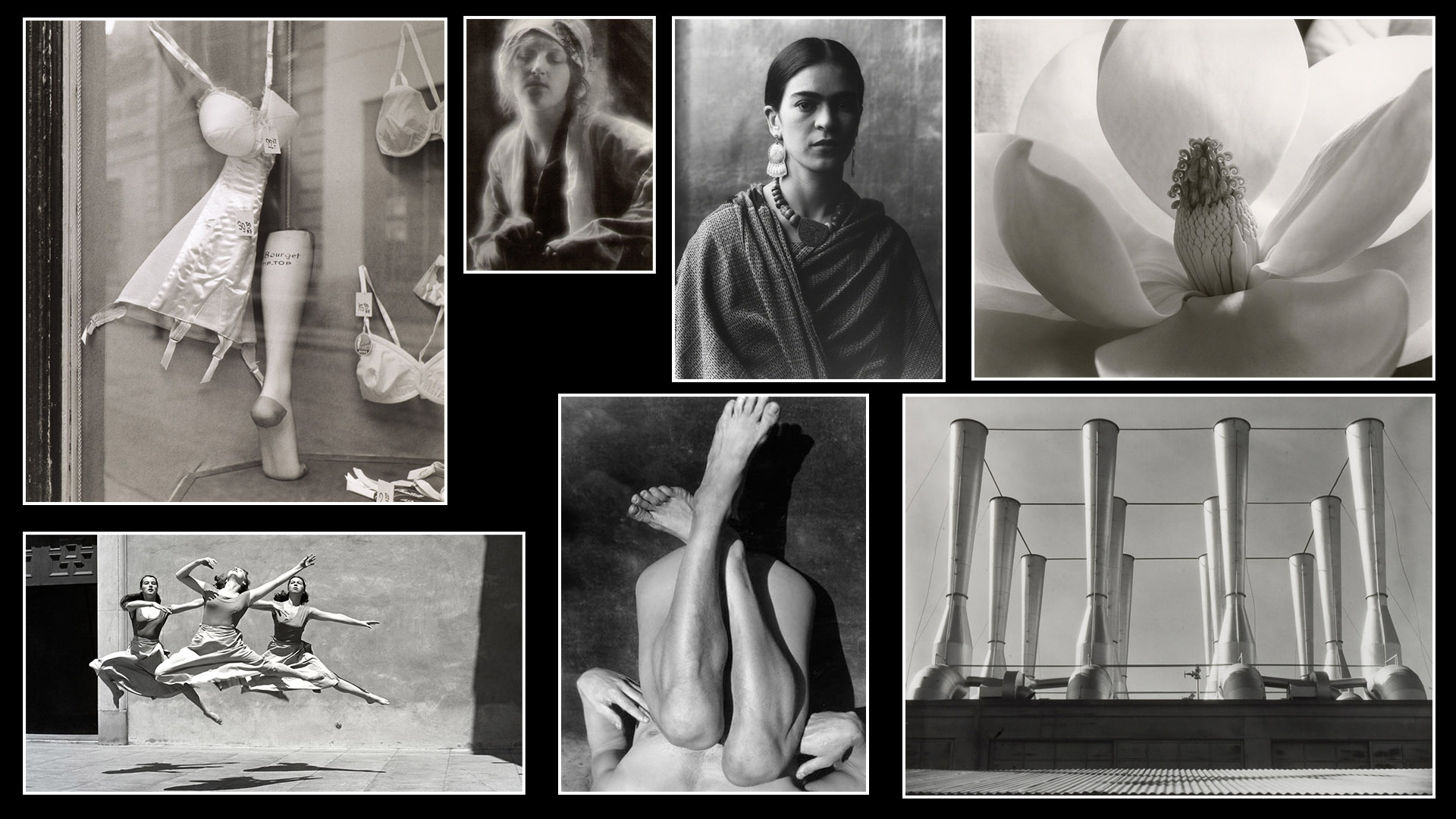 On Photography the work of Imogen Cunningham