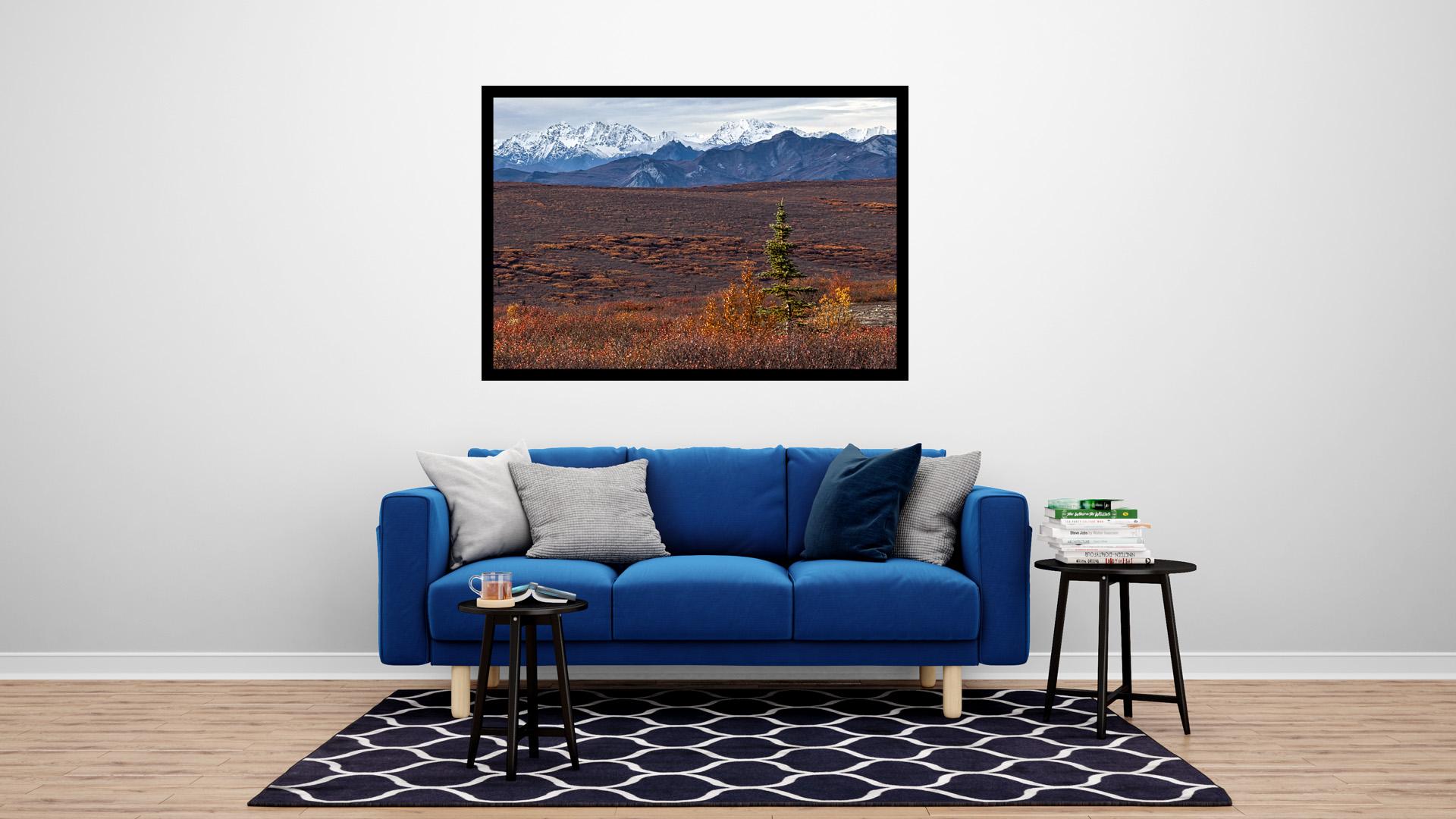 blue couch photo alaska