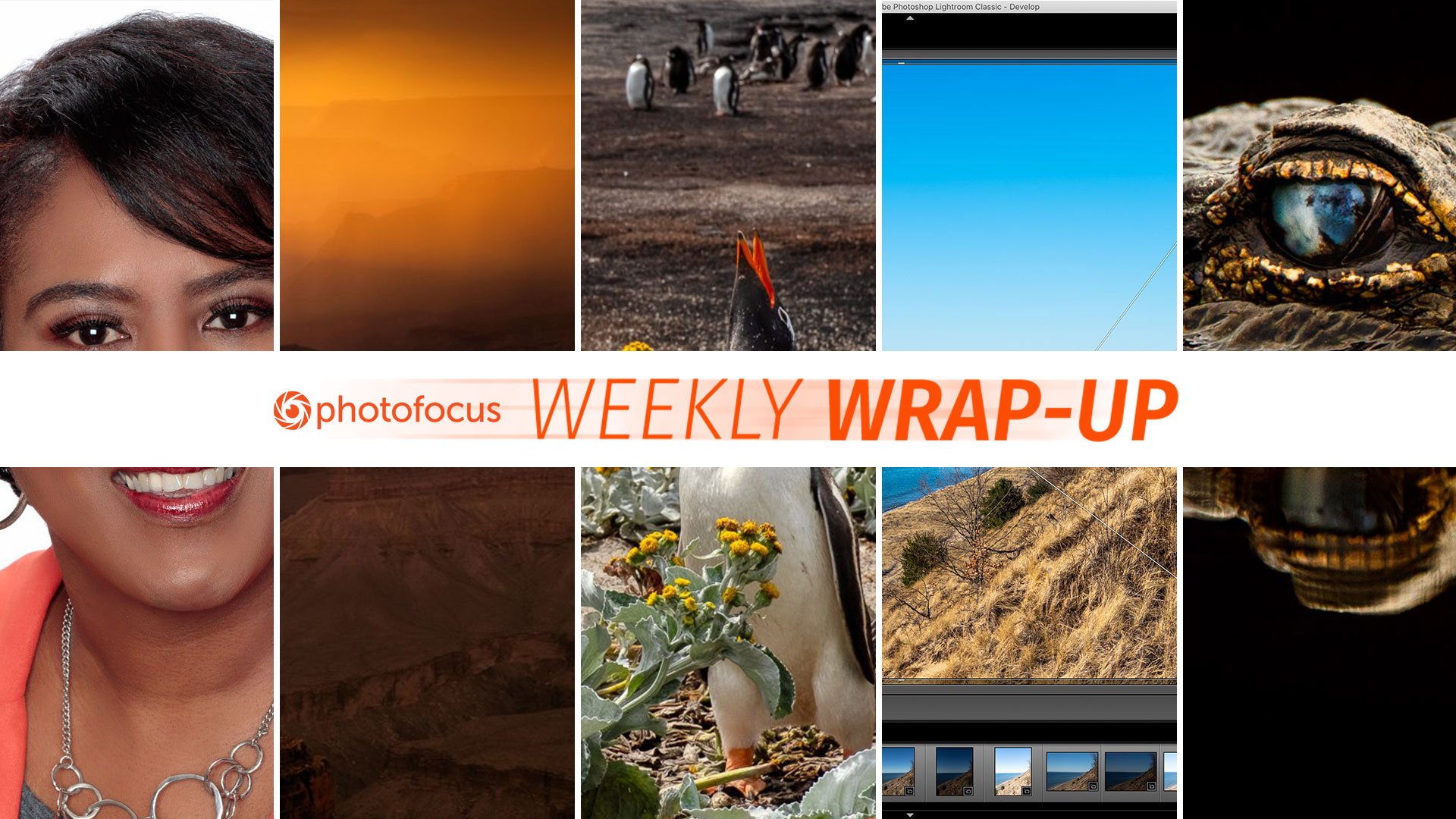 wrapup-020919
