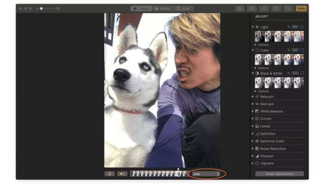 Exporting a Live Photo from an iPhone as GIF in Photos for Mac