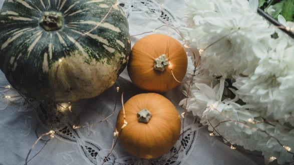 Julie Powell_NL Pumpkins_Header-06763
