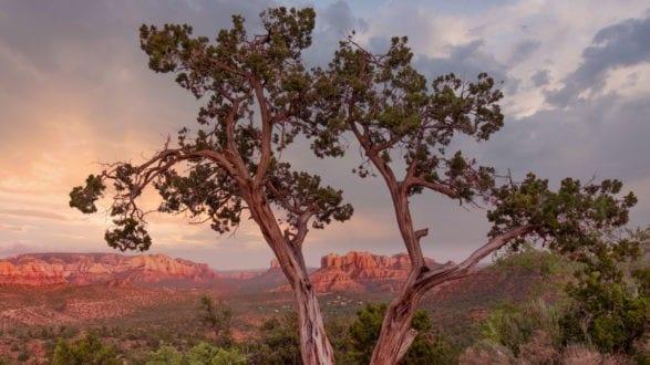 P1233870_red_rock_sunset_sky_replace_2560p