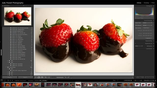 Using Excire Search in Lightroom Classic for the first time