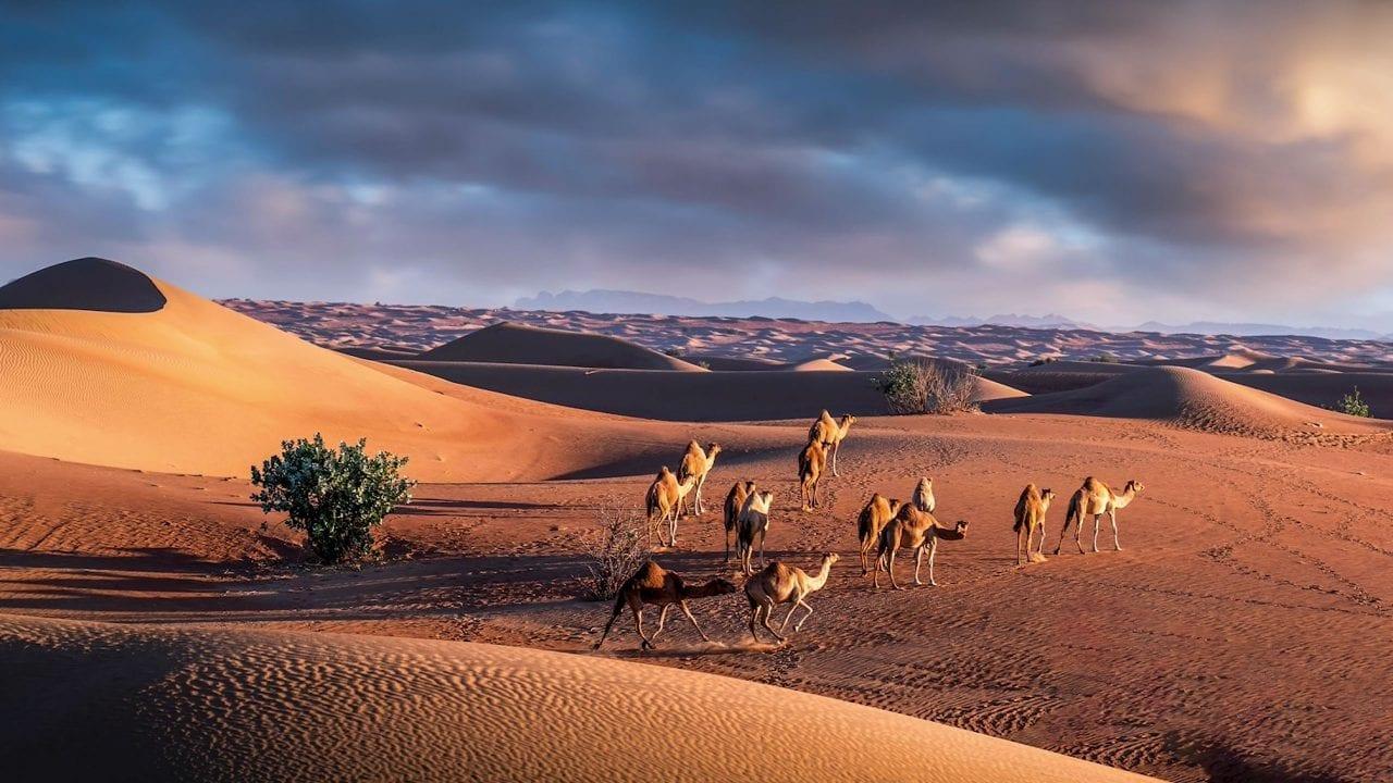 Creating dramatic desert photography