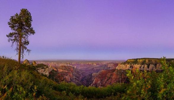 grand_canyon_overlook2_row_pano_v3_2500p