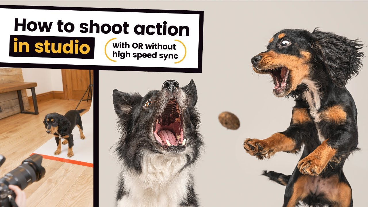 How to Photograph Action in Studio: Freeze Motion like a Treat Catching Pro - youtube