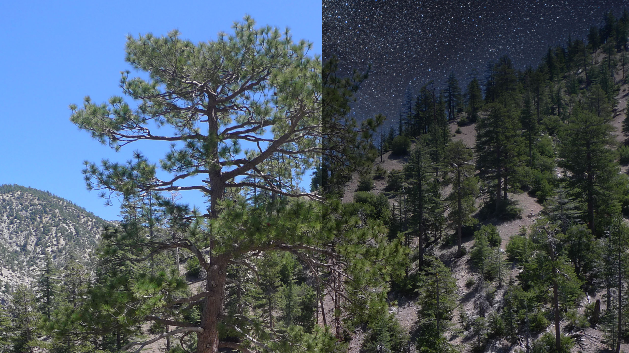 PHOTOFOCUS 2560x1440px sky replacement before and after