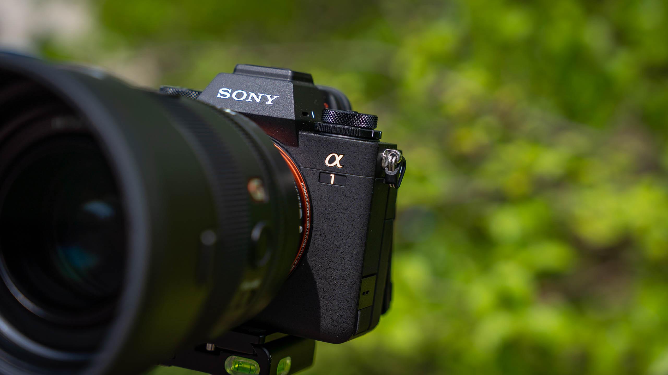 Sonya1-50mm-027-2