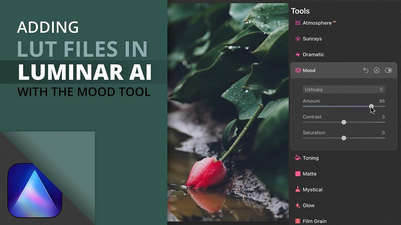 Adding LUT files with the Luminar AI Mood tool - youtube