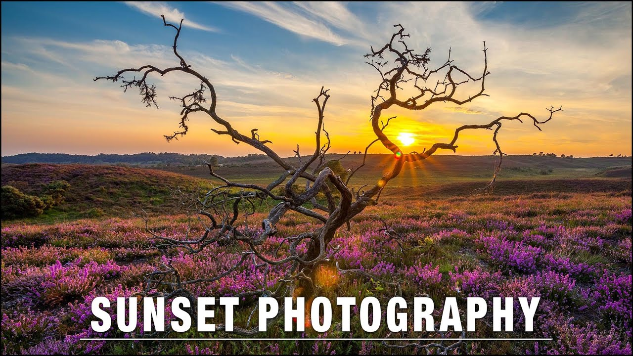 Sunset Photography – Perfect Exposures Every Time - youtube