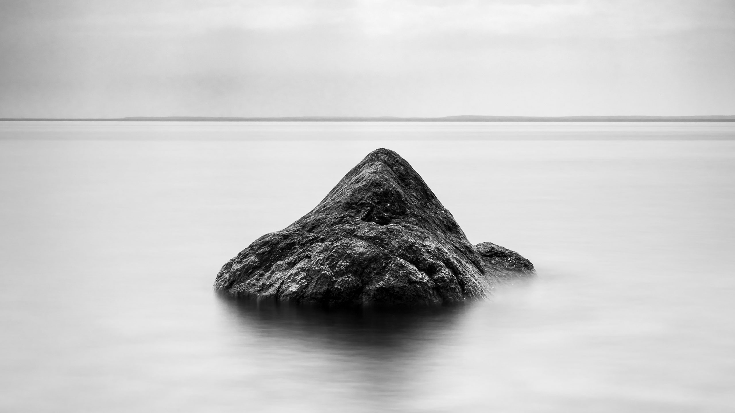 Todd-Higgins-featured-isolation