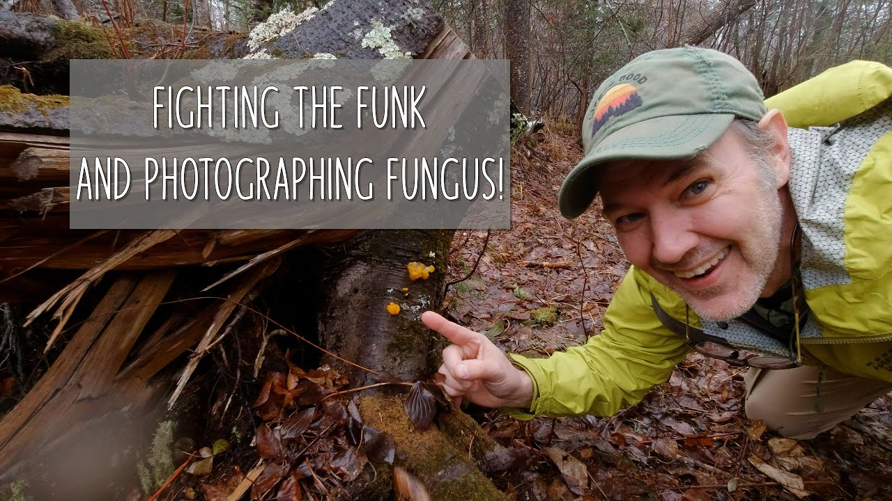 Fighting the Funk and Photographing Fungus - youtube