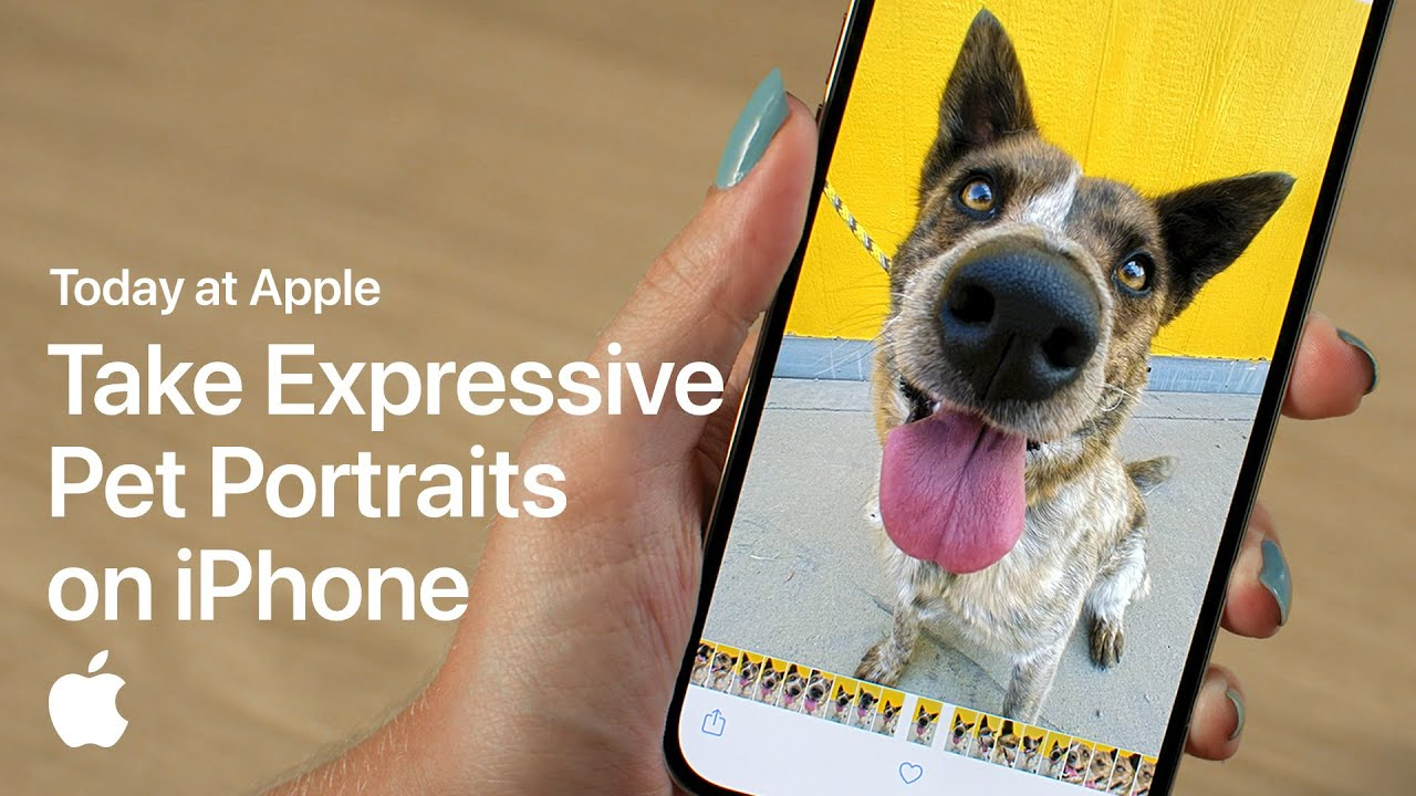 Take Expressive Pet Portraits on iPhone with Sophie Gamand | Apple - youtube
